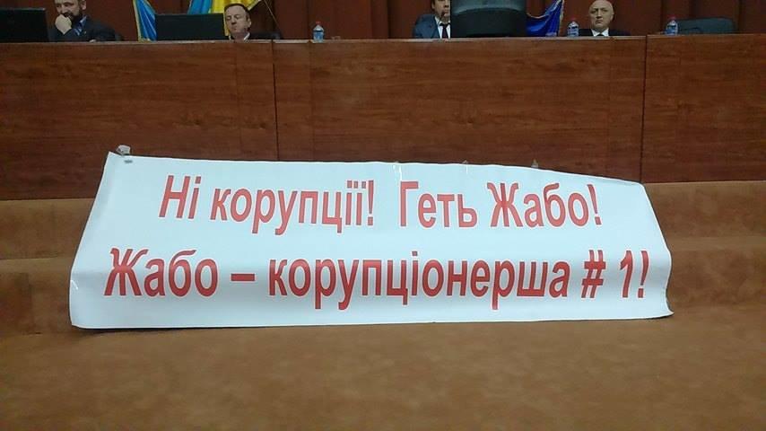 Противники начальницы Полтавской областной МСЭ устроили акцию протеста в областном совете (Фото), фото-2