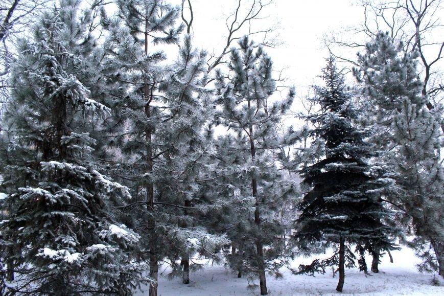 Мариуполь засыпало снегом (ФОТО), фото-4