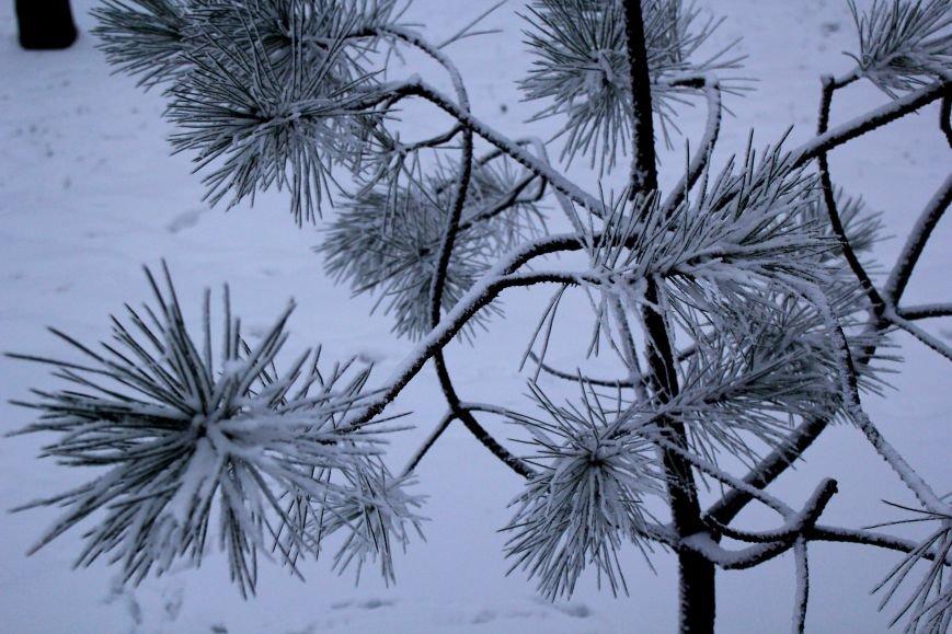 Мариуполь засыпало снегом (ФОТО), фото-3