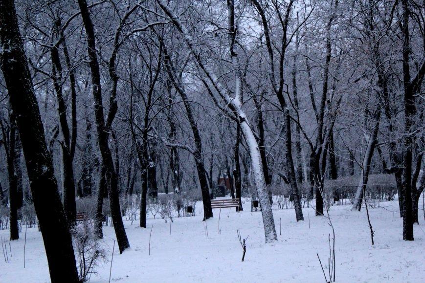 Мариуполь засыпало снегом (ФОТО), фото-2