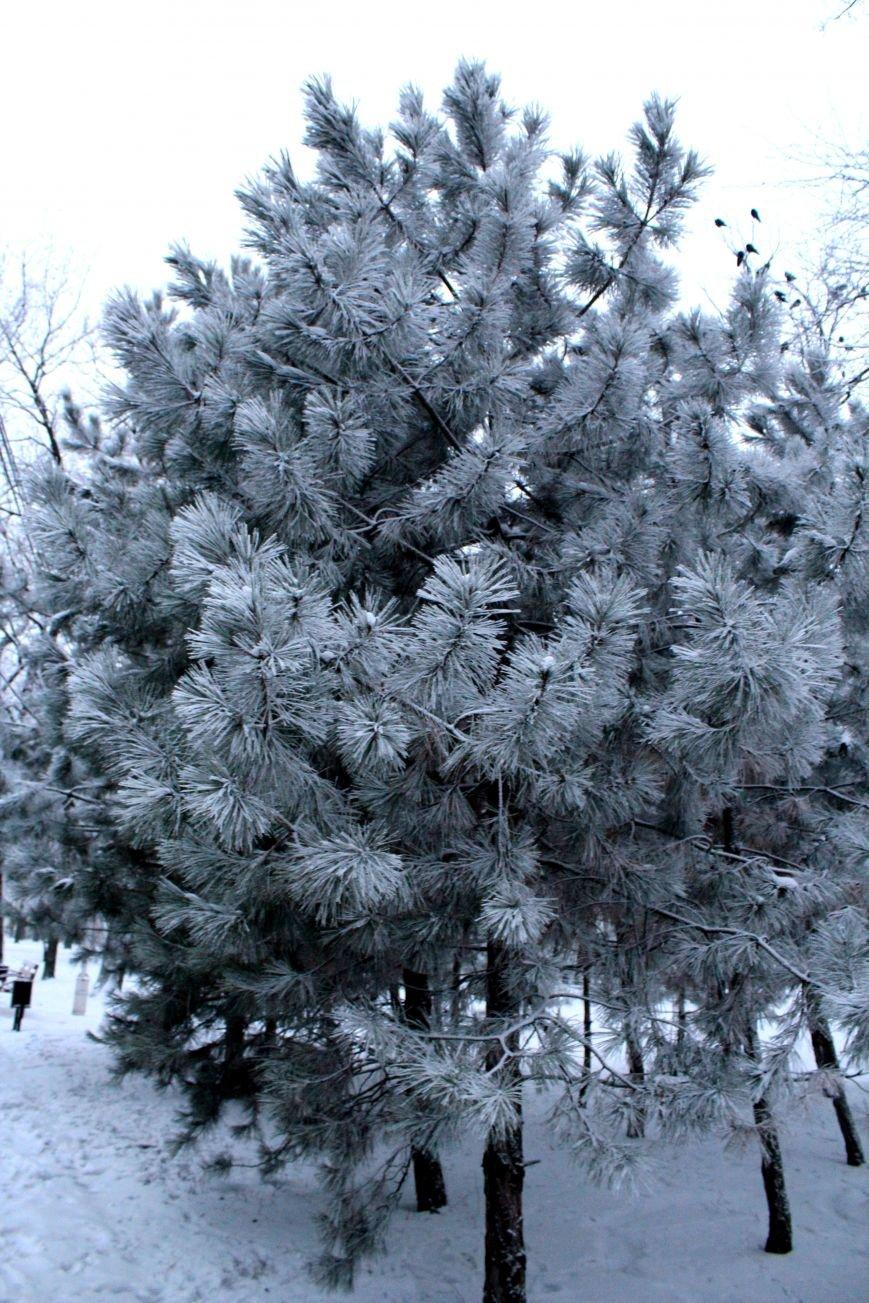 Мариуполь засыпало снегом (ФОТО), фото-8