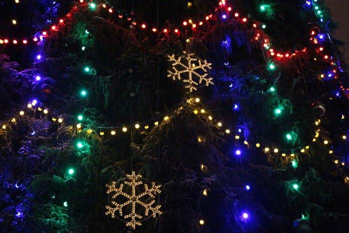 В преддверии Нового года витебчане и сотни сказочных персонажей «зажгли» центральную елку города, фото-5