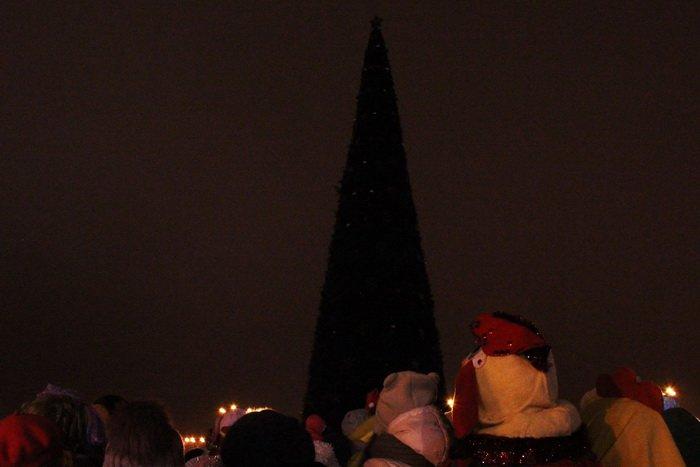 В преддверии Нового года витебчане и сотни сказочных персонажей «зажгли» центральную елку города, фото-2