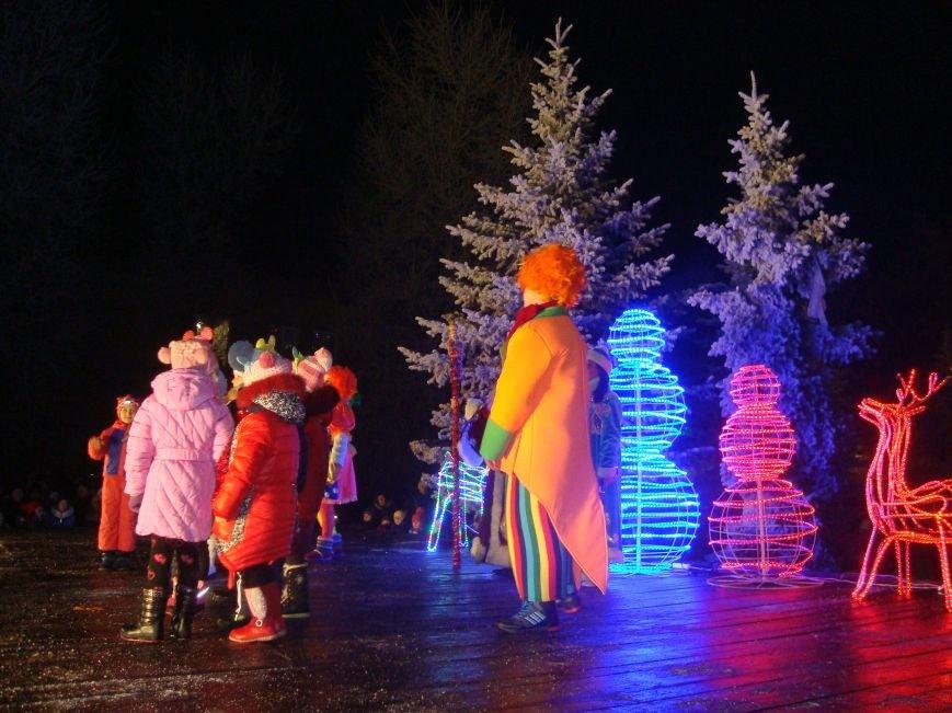 Огненное шоу, праздничный концерт и национальные блюда от казаков - в Родинском открыли главную елку, фото-9
