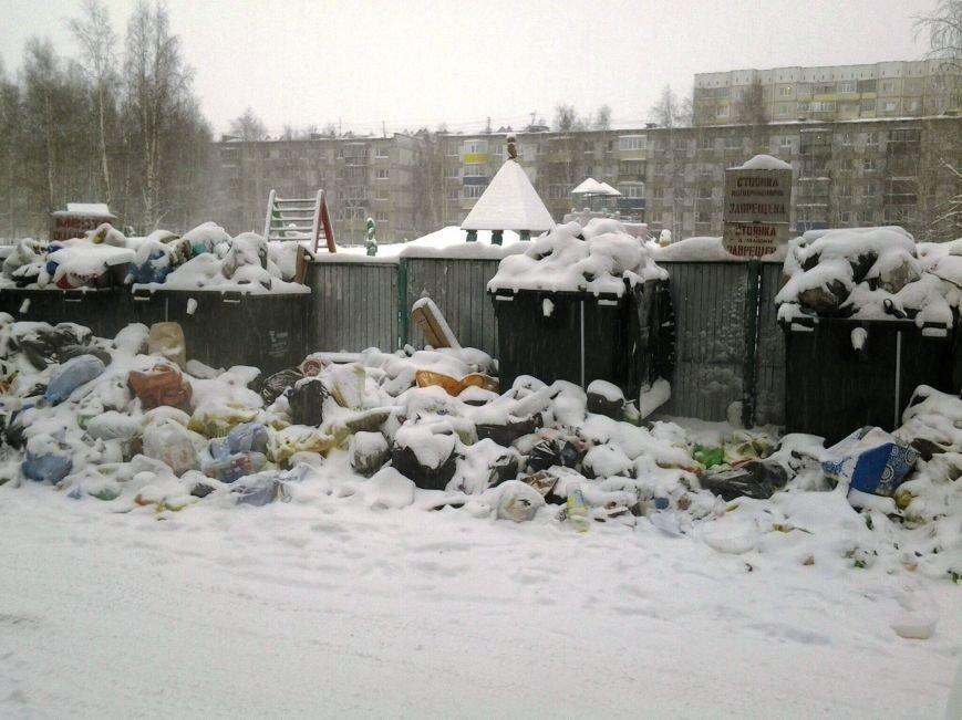 «Живем как в помойке!» В ДЖКХ пообещали к Новому году город очистить от мусора, фото-2
