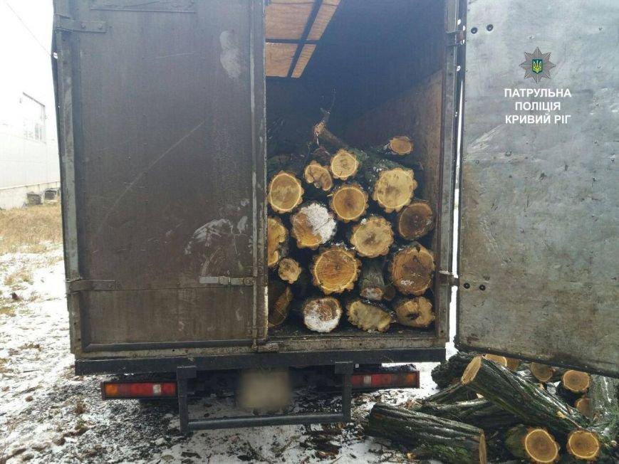 В Кривом Роге  без документов перевозили дрова акации (ФОТО), фото-2