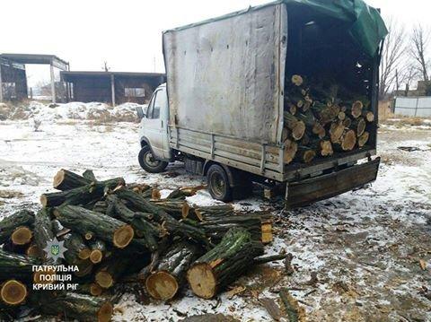 В Кривом Роге  без документов перевозили дрова акации (ФОТО), фото-1