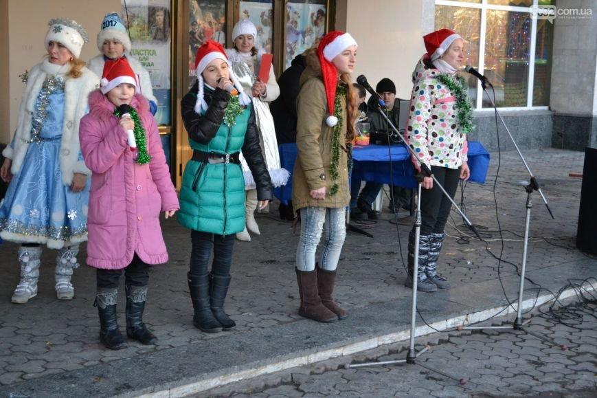 На Левобережье Каменского открыли новогоднюю елку, фото-16