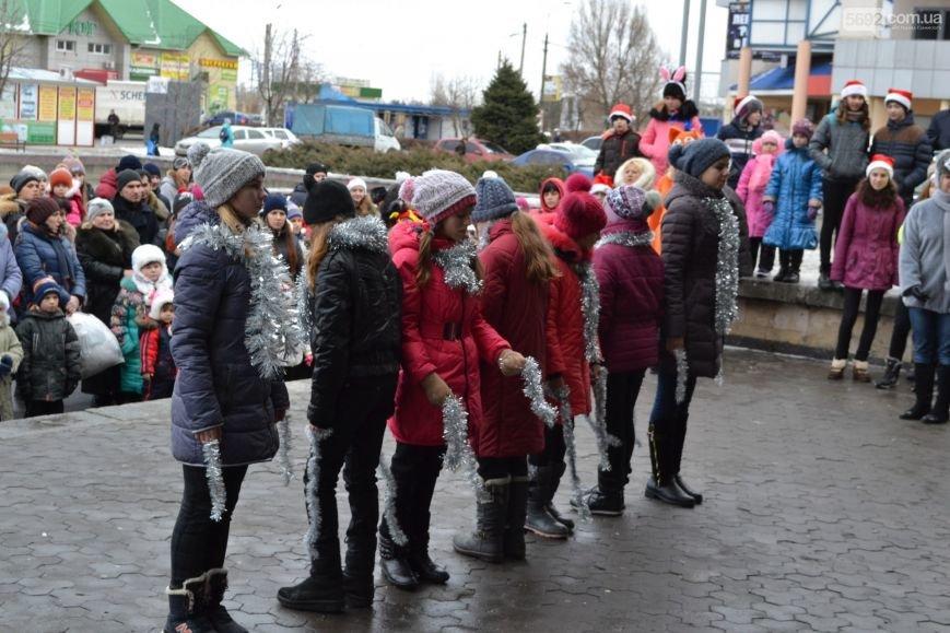 На Левобережье Каменского открыли новогоднюю елку, фото-2