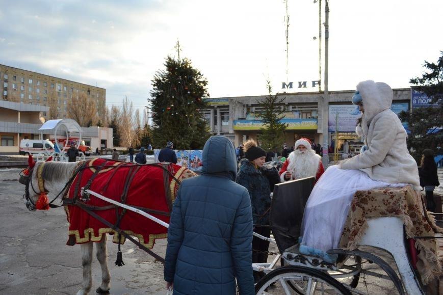 На Левобережье Каменского открыли новогоднюю елку, фото-14