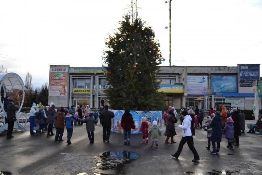 На Левобережье Каменского открыли новогоднюю елку, фото-19