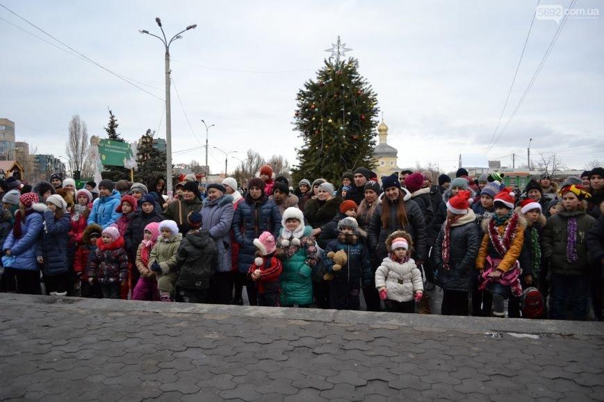 На Левобережье Каменского открыли новогоднюю елку, фото-4