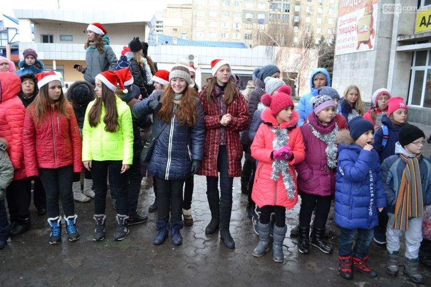 На Левобережье Каменского открыли новогоднюю елку, фото-11
