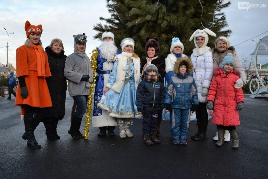 На Левобережье Каменского открыли новогоднюю елку, фото-22