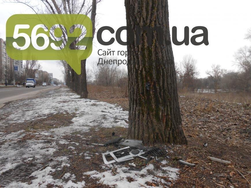 В Каменском в ДТП на проспекте Металлургов автомобиль врезался в дерево, фото-4