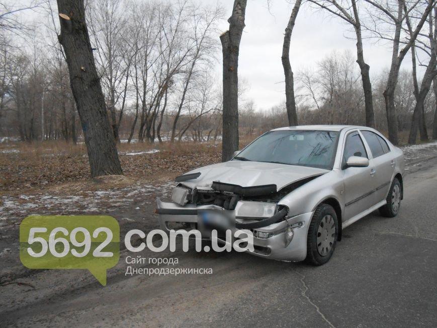 В Каменском в ДТП на проспекте Металлургов автомобиль врезался в дерево, фото-2