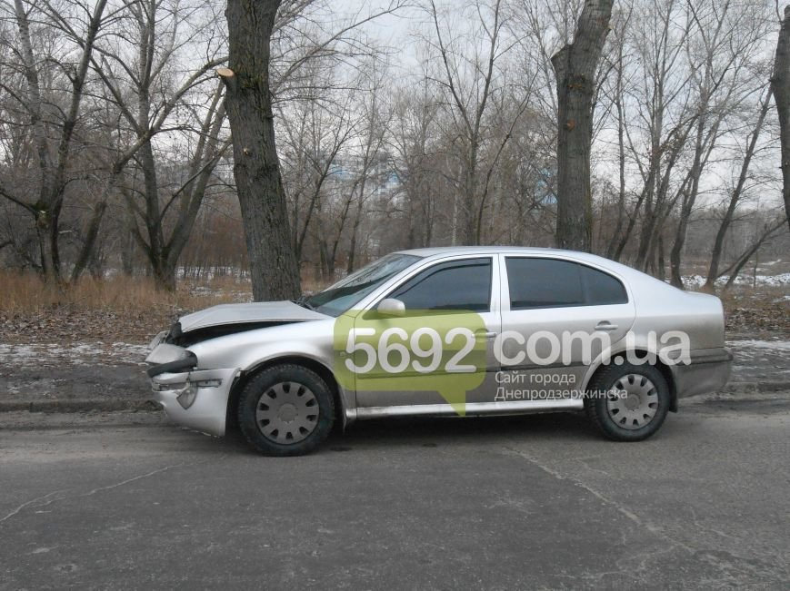 В Каменском в ДТП на проспекте Металлургов автомобиль врезался в дерево, фото-9