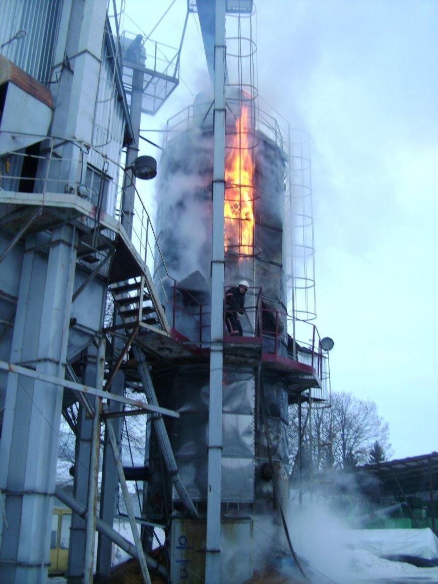На Полтавщине сгорели 5 тон кукурузы, фото-1