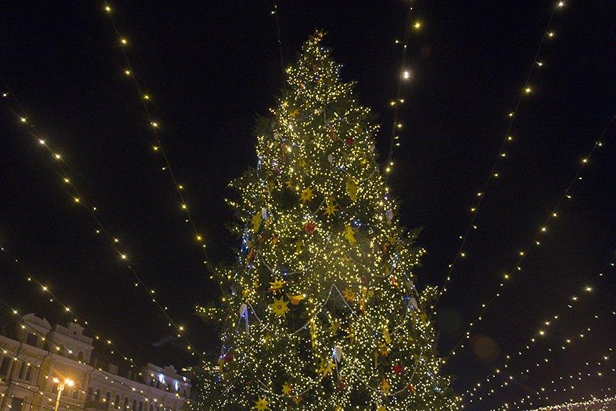 На Софии встретили Новый год (ФОТОРЕПОРТАЖ), фото-2