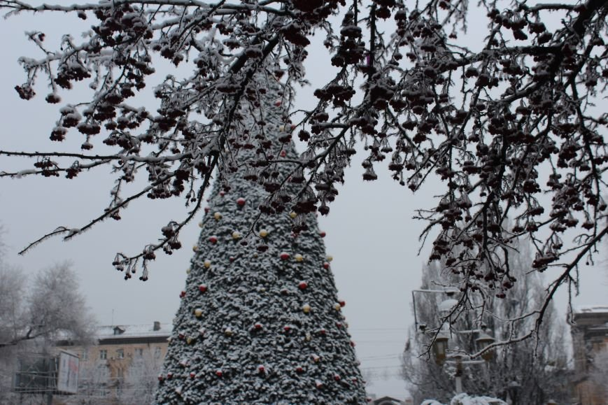 Как выглядит Запорожье в первый день нового года, - ФОТОРЕПОРТАЖ, фото-6