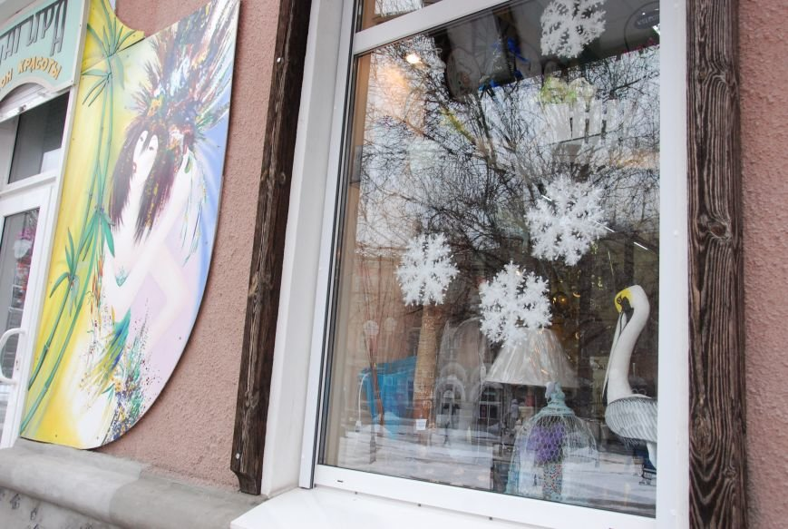 «Новогодние окна» Бердянска (ФОТОРЕПОРТАЖ), фото-10