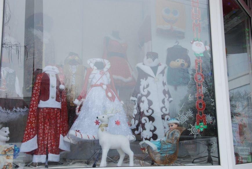 «Новогодние окна» Бердянска (ФОТОРЕПОРТАЖ), фото-3