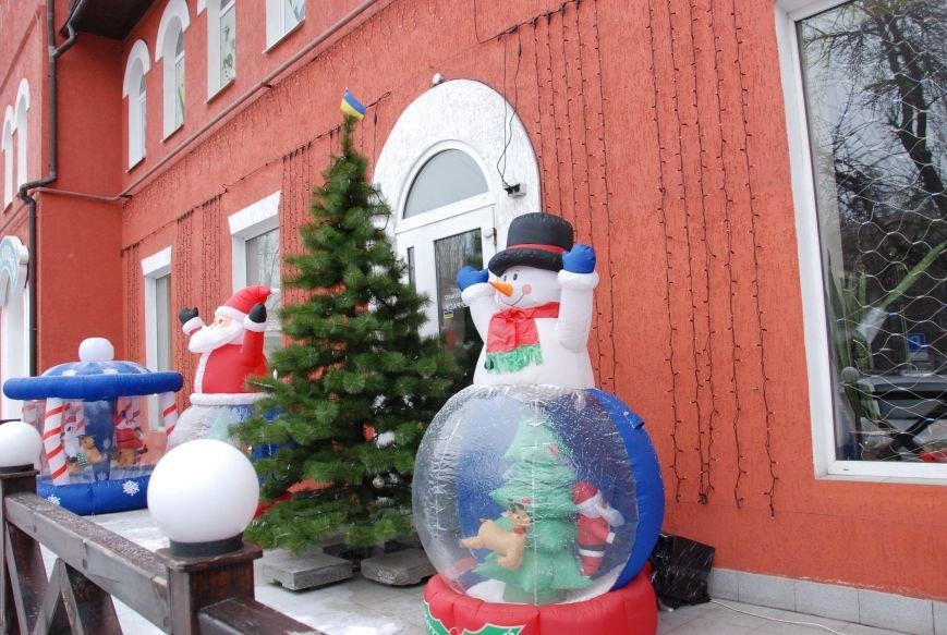 «Новогодние окна» Бердянска (ФОТОРЕПОРТАЖ), фото-17