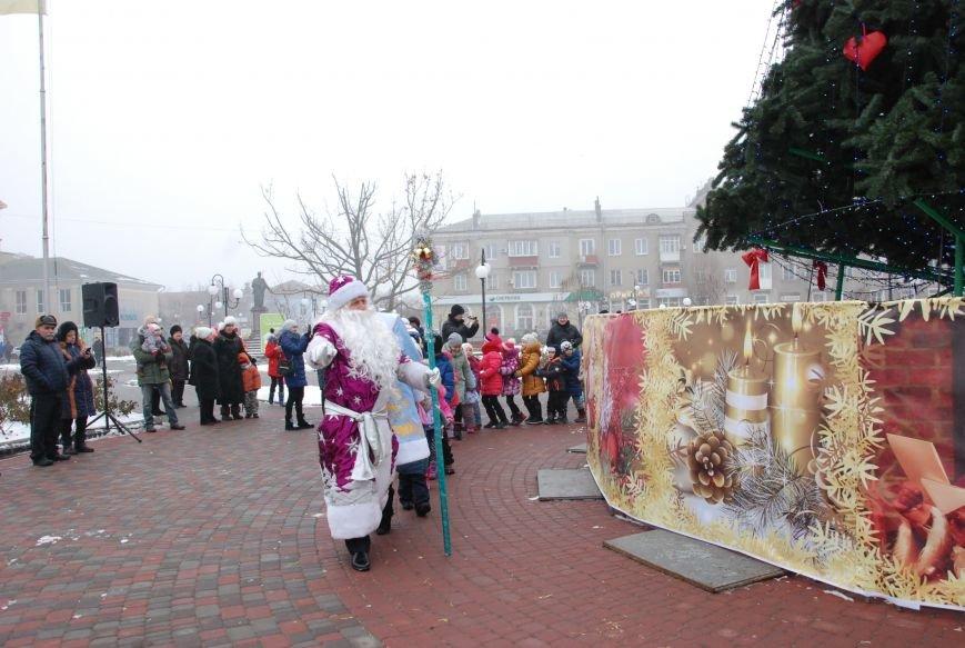 В Бердянске продолжались Новогодние мероприятия возле главной елки  города, фото-2