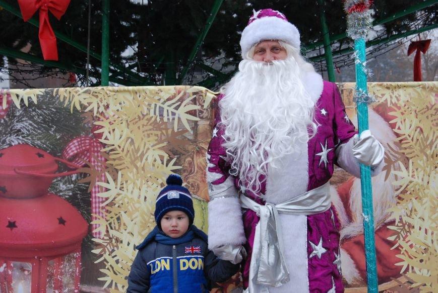 В Бердянске продолжались Новогодние мероприятия возле главной елки  города, фото-9