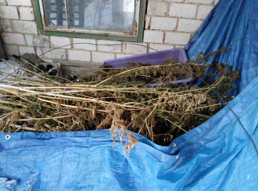 Харьковские полицейские нашли у мужчины дома почти полсотни килограмм конопли (ФОТО), фото-1