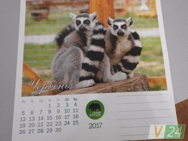 А у Луцькому зоопарку - власний  календар, фото-3