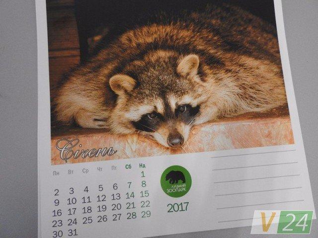 А у Луцькому зоопарку - власний  календар, фото-1