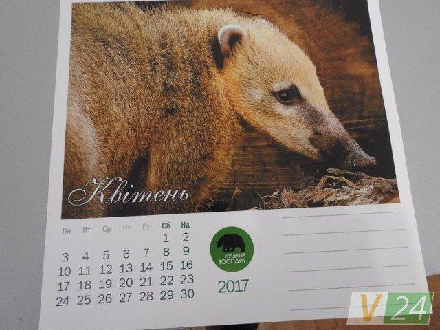 А у Луцькому зоопарку - власний  календар, фото-2