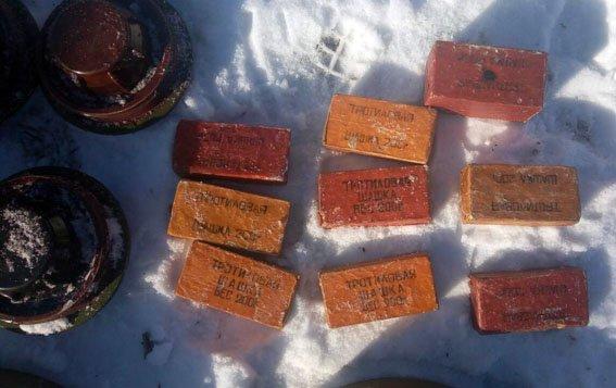 В прифронтовом Новолуганском обнаружили тайник с боеприпасами, фото-2