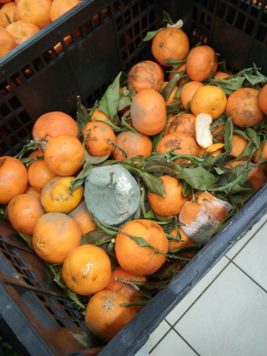 Гнилые мандарины на прилавке шокировали одесситов (ФОТО), фото-2