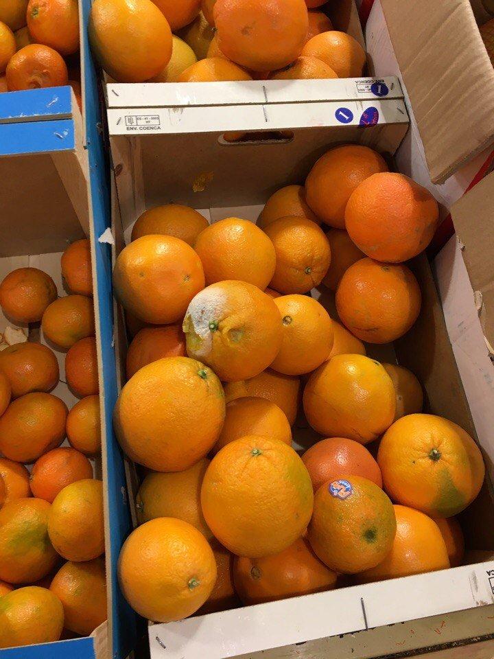 Гнилые мандарины на прилавке шокировали одесситов (ФОТО), фото-4