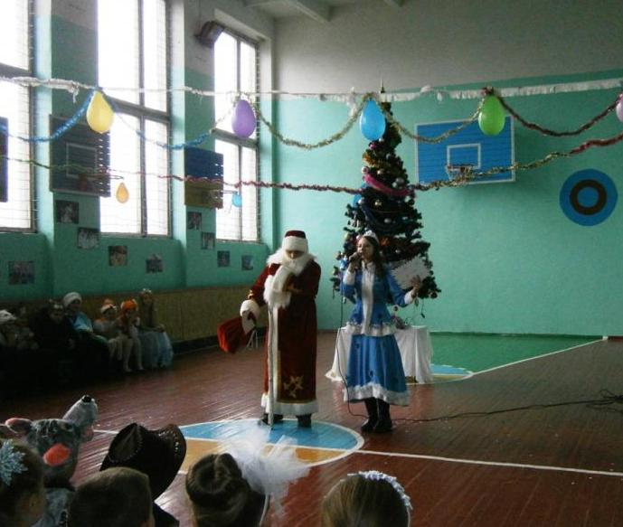 Як школярі Броварщини Новий рік зустрічали (Фото), фото-6