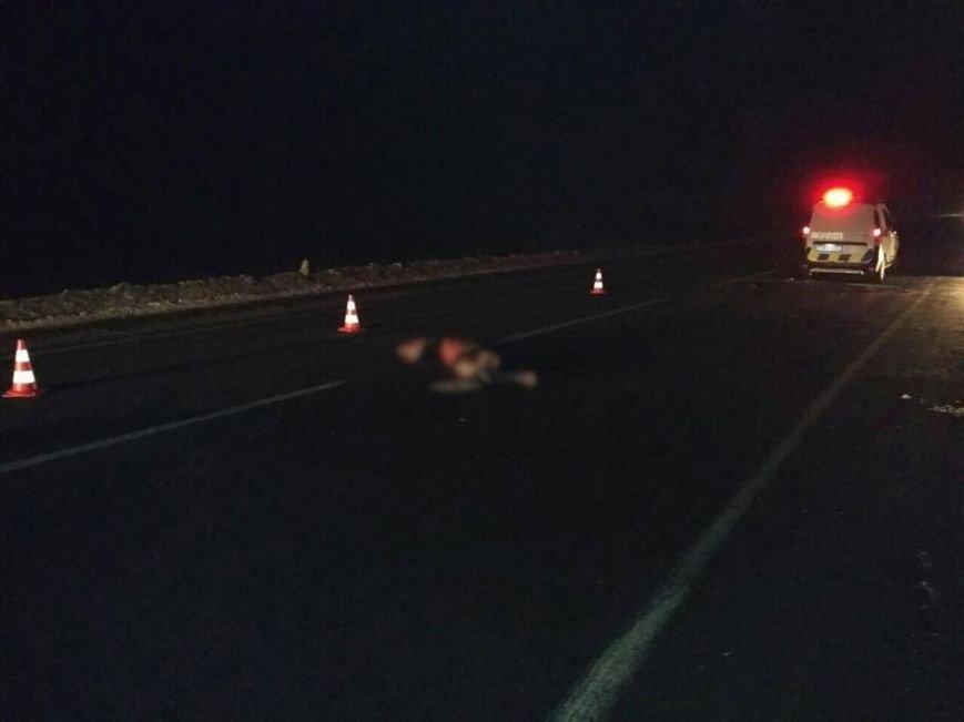 Два автомобиля сбили пешехода на трассе в Харьковской области (ФОТО), фото-2