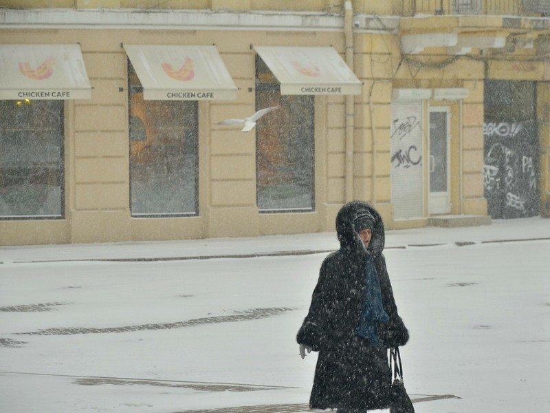 Снегопад укутал Одессу целиком всего за несколько часов (ВИДЕО, ФОТО), фото-4