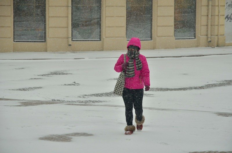 Снегопад укутал Одессу целиком всего за несколько часов (ВИДЕО, ФОТО), фото-5