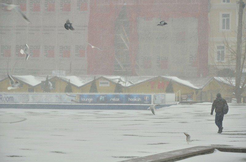 Снегопад укутал Одессу целиком всего за несколько часов (ВИДЕО, ФОТО), фото-3