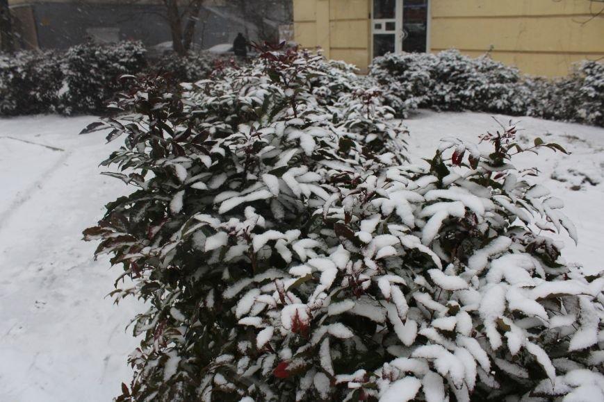 Запорожье заметает снегом, - ФОТОРЕПОРТАЖ, фото-9