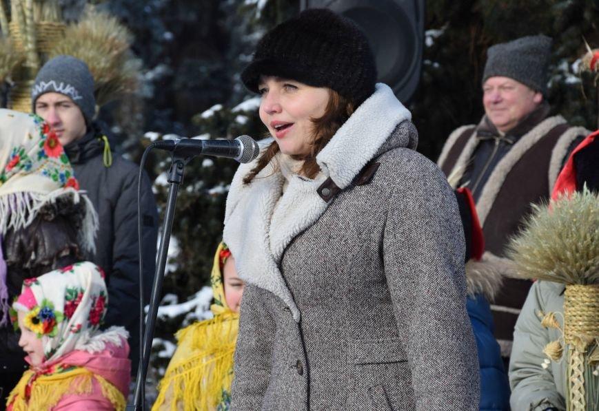 У Луцьку встановили символ Різдвяних свят, фото-11