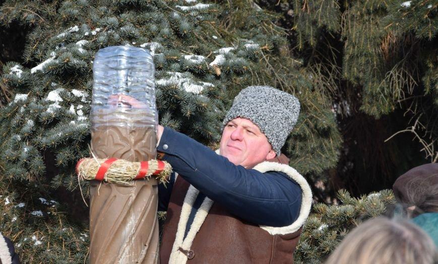 У Луцьку встановили символ Різдвяних свят, фото-13