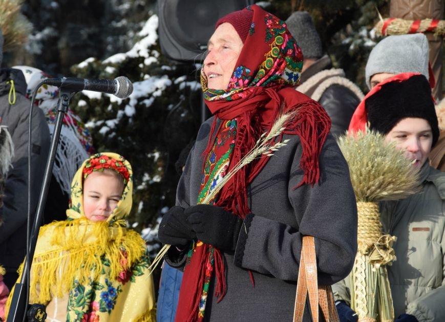 У Луцьку встановили символ Різдвяних свят, фото-9