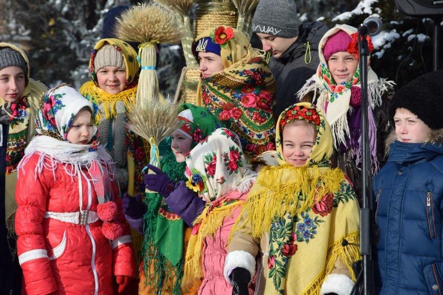 У Луцьку встановили символ Різдвяних свят, фото-3