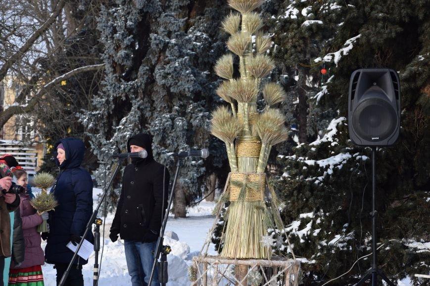 У Луцьку встановили символ Різдвяних свят, фото-17