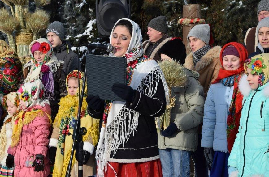 У Луцьку встановили символ Різдвяних свят, фото-4