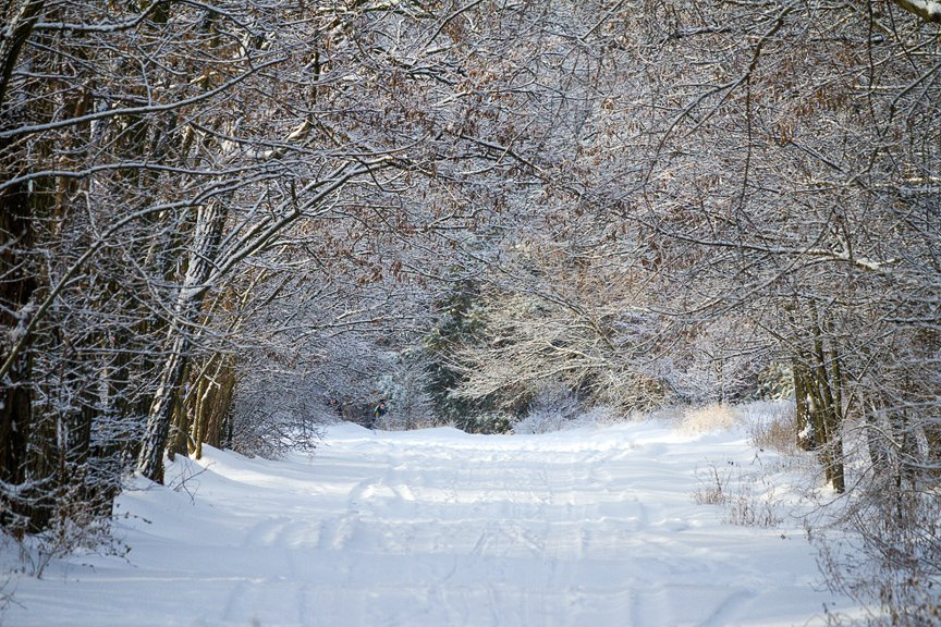 Зима на Хортице: фоторепортаж Алексея Толмачева, фото-9