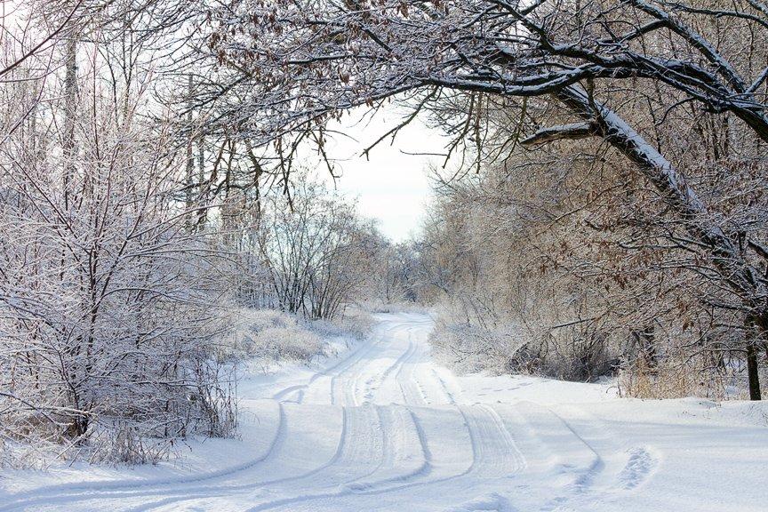 Зима на Хортице: фоторепортаж Алексея Толмачева, фото-7